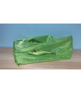 Tela holográfica verde