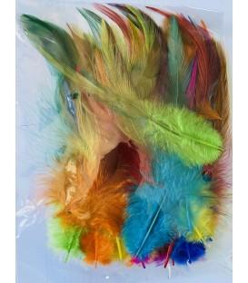 Plumas gallo multicolor